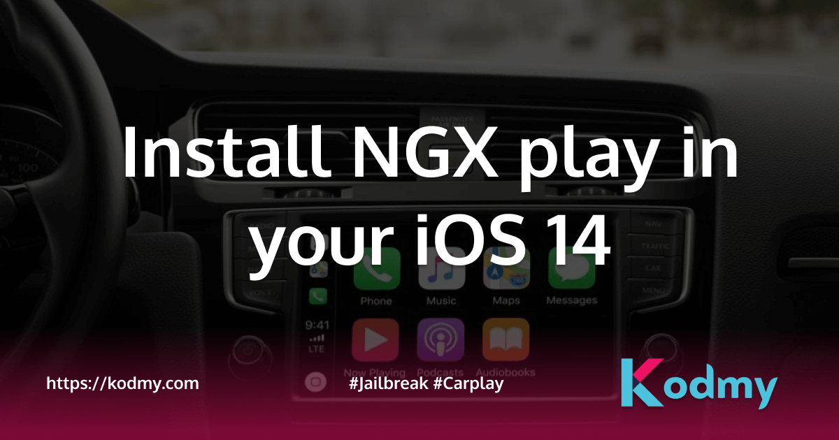 Install NGX play in your iOS 14