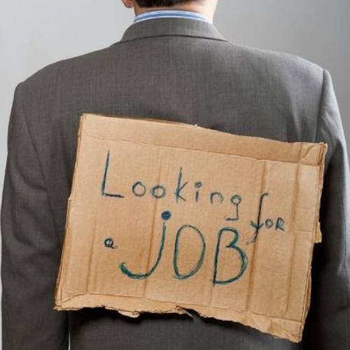 job seeking professional